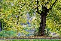 Природа Москвы