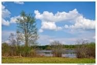 Смоленское поозерье. Озеро Ельша.