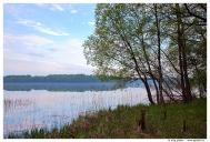 Смоленское поозерье. Озеро Баклановское.