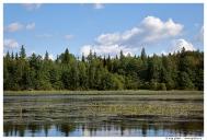 Карелия. Озеро Вагатозеро.