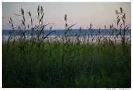 Карелия. Озеро Сямозеро.