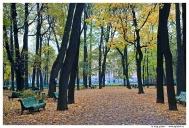 Санкт-Петербург. Летний сад.